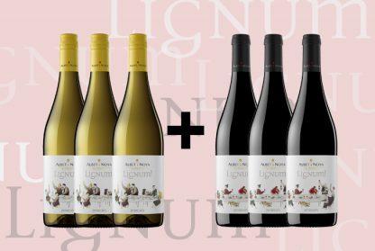 vins ecologics albetinoya lletres Por un brindis informal
