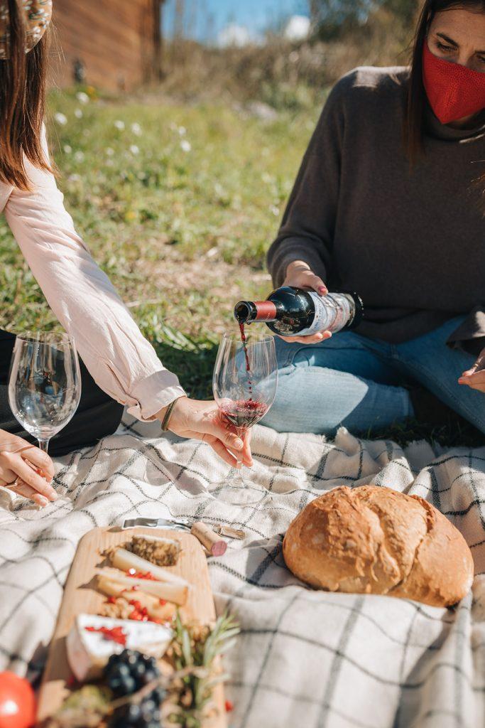 picnic entre vinyes