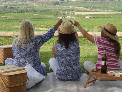 picnic entre vinyes Pícnic entre Vinyes per celebrar la Verema